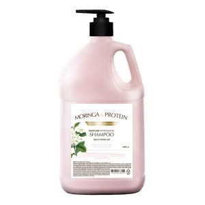 페디슨 인스티튜트보떼 모링가&프로테인 헤어샴푸(Hair Shampoo) 4L